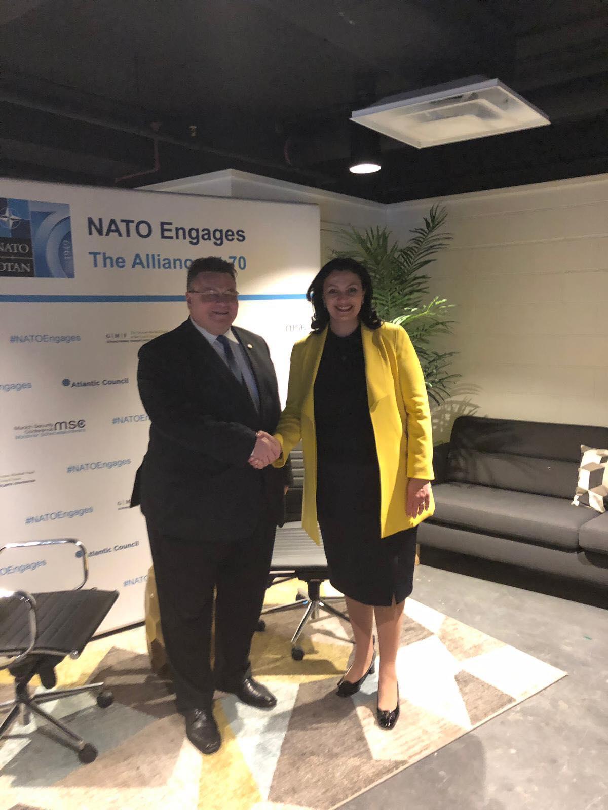 Україна зацікавлена у розвитку співпраці з Литвою щодо приведення Збройних Сил у відповідність до стандартів НАТО, - Іванна Климпуш-Цинцадзе у Вашингтоні